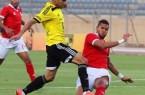 Amro Tarek